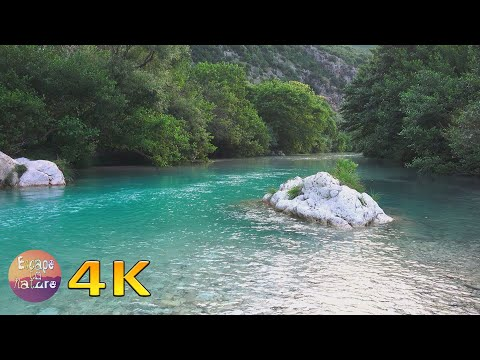 Peaceful relaxing nature sounds - Mindful way to calm your mind and heal your heart - 4K video