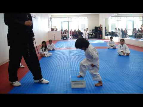 3-Year-Old Tries to Break Board in Taekwondo | Taekwondo Kid