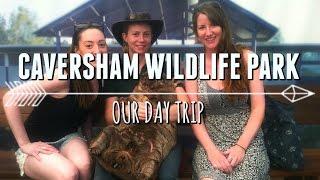 Caversham Australia  city photo : Caversham Wildlife Park