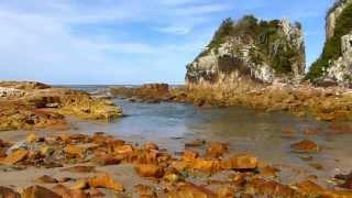 Diamond Beach Australia  city photos gallery : Diamond Head camping ground - Crowdy Bay National Park, NSW, Australia