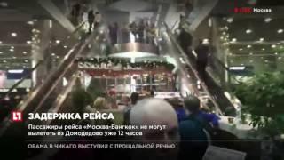 Пассажиры рейса «Москва Бангкок» не могут вылететь из Домодедово уже 12 часов