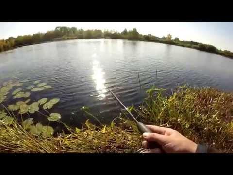 видео твичинг на реке