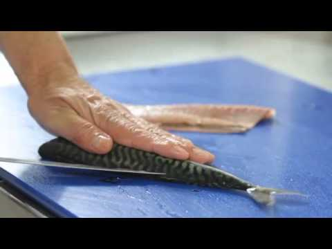 How To Fillet Mackerel