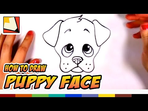 How to Draw a Cute Puppy Face Step by Step CC