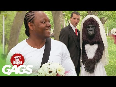 Bridezilla? No, just Gorilla Bride - Youtube