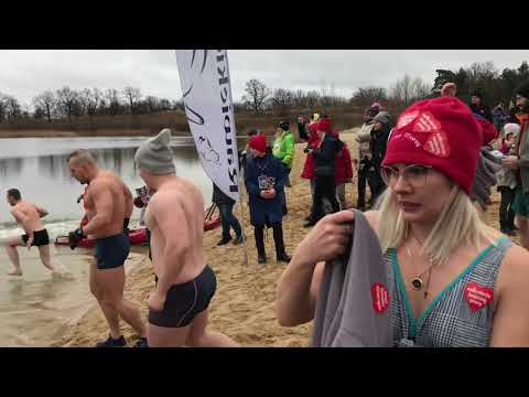 Wideo1: Kąpiel morsów w sierakowskim zbiorniku