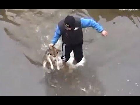 Mies auttaa koiran pulasta – Iloinen tervehdys lopussa pelastajilleen