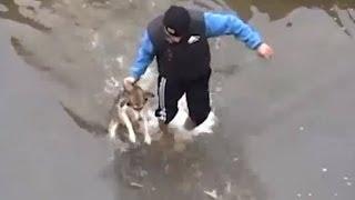 Facet ratuje psa, który nie mógł wydostać się z rzeki. Reakcja zwierzaka mocno chwyta za serce!