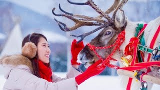 サンタ仕様の動物やワインボトルツリー、花火クリスマス/星野リゾート「リゾナーレ」クリスマスPR動画