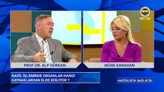 Organ Nakli - Prof. Dr. Alp Gürkan