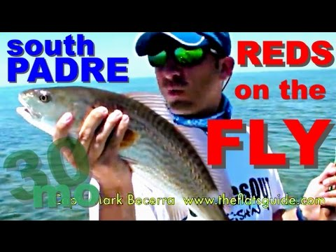 SALTWATER FLY FISHING REDFISH SOUTH PADRE ISLAND TEXAS