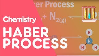 What is the Haber Process