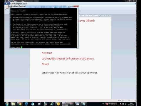 Metin2  Files Kurulumu  Tekstar18