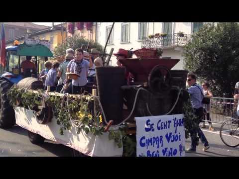 Festa dell'uva di Angera – Edizione 2014