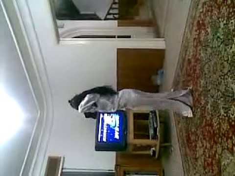 Arab Girls Dance Training at Home