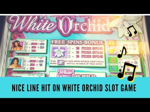 NICE LINE HIT ON WHITE ORCHID SLOT GAME - SunFlower Slots