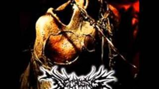 NECROSSIS-destruction with vomit