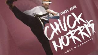 Troy Ave - Chuck Norris (Hoes & Gangstas) (HQ) (Audio)