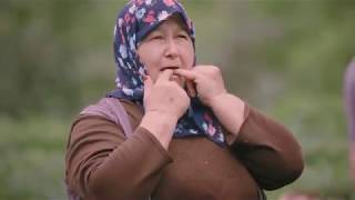 """Video """"لغة الصفير"""" من أغرب لغات العالم التي يتقنها سكان قرى شمال تركيا MP3, 3GP, MP4, WEBM, AVI, FLV November 2018"""
