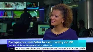 Evropskou unii čeká brexit i volby do EP