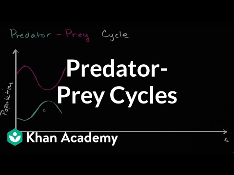Predator Prey Relationships  Lesson PowerPoint additionally Graphing and interpreting ze mussel data   Cary Institute of also Pin By On Pre Science Worksheets Activities For Kids furthermore Predator Prey Simulations Lesson Plans   Worksheets furthermore Predator Prey Lesson Plans Middle Guided Reading Lesson Plan also Pin By On Pre Science Worksheets Activities For Kids furthermore  additionally Quiz   Worksheet   Warning Coloration in Animals   Study additionally Ecological Relationship POGIL as well Know Predators and Preys   Printable Science Worksheet for 3rd grade further Quiz   Worksheet   Types of Camouflage in Animals   Study moreover Food Worksheet Category Page 18   worksheeto also Predator prey cycles  video    Ecology   Khan Academy likewise Food Web Worksheet Middle Food Web Predator Prey Activity besides Predator Prey Relationships Lesson Plans   Worksheets further Hide and Seek   4th Grade Reading  prehension Worksheet. on predator prey worksheet high
