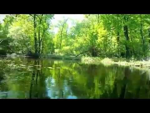 Лодочка Сергей Чекалин. Boat Sergey Chekalin.  ロシア音楽  俄罗斯音乐 (видео)