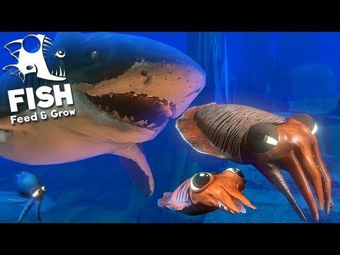 Feed and Grow Fish - Novos Animais Aquáticos, Cuttlefish e Tubarão Tigre!  (#19) (PT-BR)