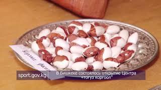 В Бишкеке состоялось открытие Центра «тогуз коргоол