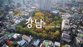 강남, Fly in the Sky - 도산공원