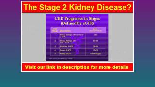 Visit: http://bracacacohen.odgi.net/Kidney Stage 2 Kidney Disease Assessment and management of Stages 1+2 CKD. Kidney Disease Almost all patients with ...