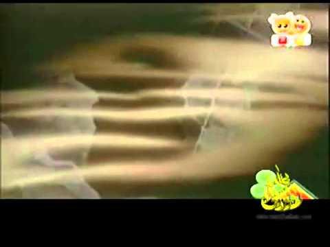 فريق المحققين الصغار (كونان) 6 – قناة بسمة