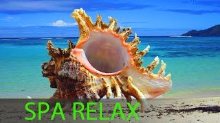 6 Hour Best Relaxing Spa Music, Background Music, Soothing Music, Massage Music☯357