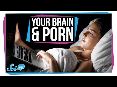 What Does Pornography Do to Your Brain?
