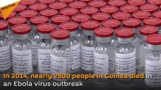 The first batch of Russia's prophylactic Ebola vaccine has been shipped to Guinea It will enable doctors to vaccinate 1000 people.