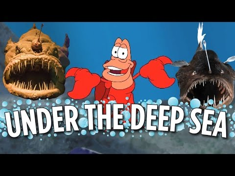 Under The Deep Sea (Little Mermaid Parody)