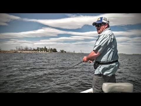 Devils lake nd fishing report jason mitchell for Devils lake north dakota fishing report