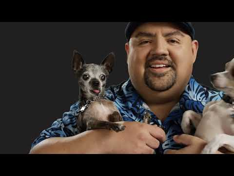 Must Love Dogs  | Gabriel Iglesias