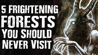 Video 5 FRIGHTENING FORESTS You Should Never Visit MP3, 3GP, MP4, WEBM, AVI, FLV Desember 2018