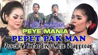 Video FULL LIMBUKAN PEYE PERCIL & YUDHO LIVE BUKA GILING MOJOPANGGOONG 2017 MP3, 3GP, MP4, WEBM, AVI, FLV Juni 2018