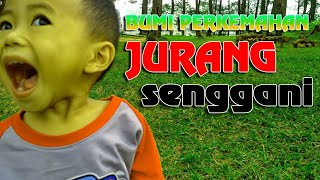 Video JURANG SENGGANI ( Sendang - Tulungagung ) MP3, 3GP, MP4, WEBM, AVI, FLV Desember 2018