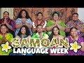 Celebrating Samoan Language Week 🇼🇸❤