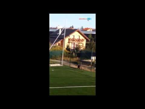 Kanec na fotbalovém hřišti