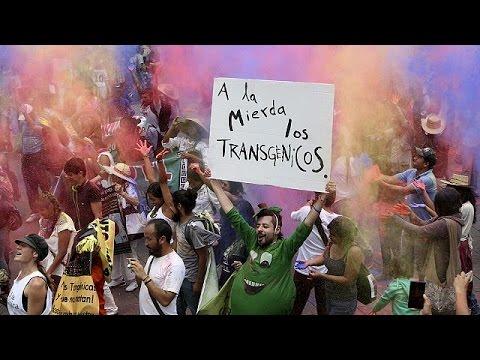"""Tohum canavarı Monsanto"" dünya çapında protesto edildi"