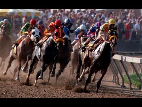 preakness stakes - It was the day of sweet revenge in racing: Louis Quatorze won the 121st Preakness Stakes with Pat Day riding, just 10 days after he was replaced as a jockey ...