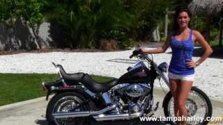 10. Used 2009 Harley-Davidson FXSTC Softail Custom Motorcycles for Sale