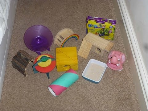 Toys I recommend for dwarf hamsters!