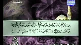 المصحف المرتل 28 للشيخ توفيق الصائغ حفظه الله