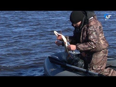 Прошло заседание областного рыбохозяйственного совета на тему ловли ценных пород рыб в период нереста