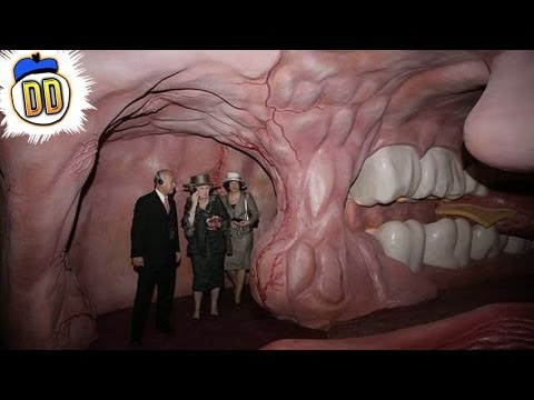 strangest - From exhibits featuring sewerage to a museum entirely composed of burnt food we count 15 weird and wonderful choices in items up for public display Facebook:...