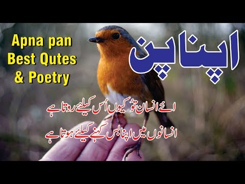 Sad quotes - Apna pan poetry and love quotes in Urdu Hindi  urdu poetry sad